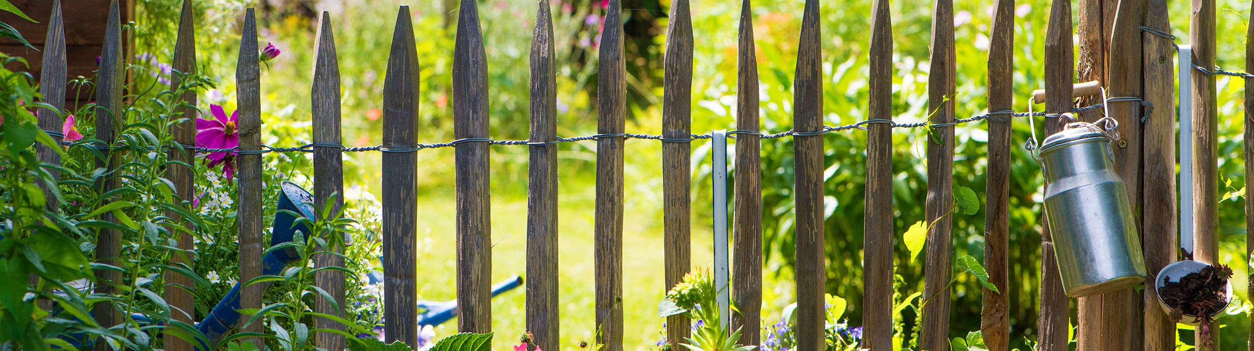 Das Gewächshaus im Kleingarten: Erfolgreich Gärtnern auf wenig Raum